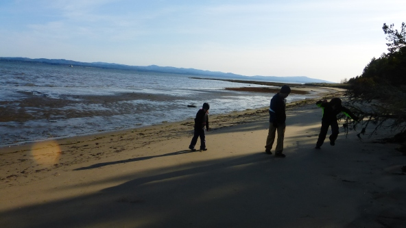 Willapa Bay. Boys played some random game of making the dog tracks disappear.
