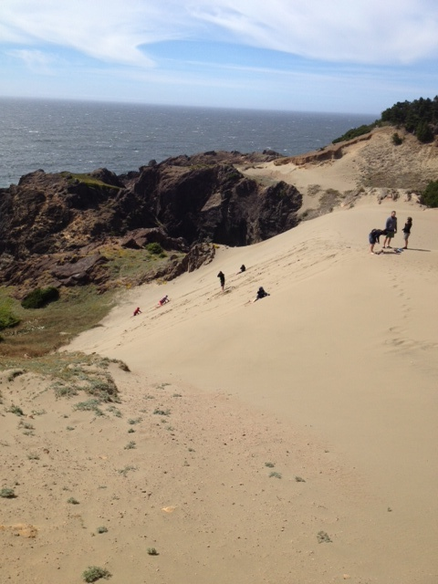 The kids loved tumbling down full on this oceanside dune. They never did it and just jumped in. Great memories!